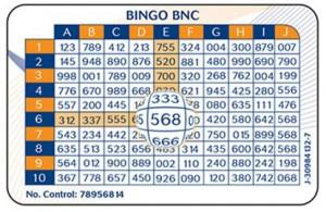 Bingo 1