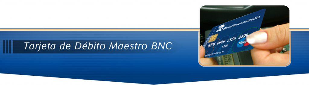 Banner 1024x282 TDD Maestro BNC