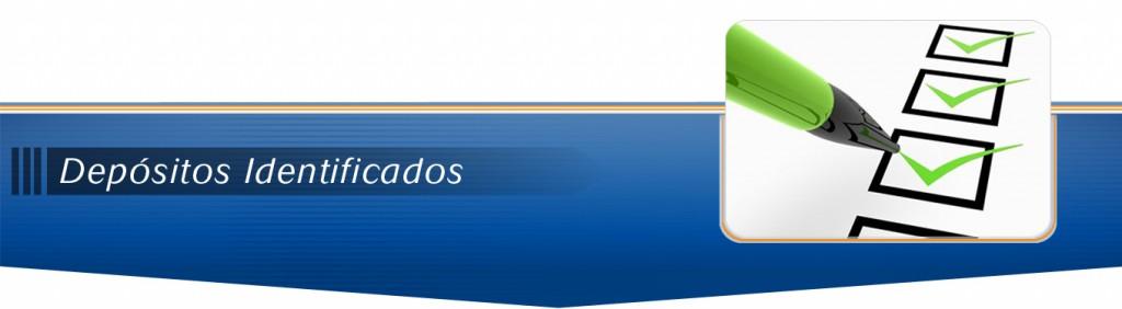 Sub-Menu-Depositos-Identificados